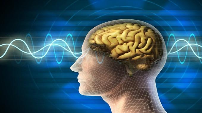 Photo of Çalışma Hayatında Beyin Gücünüzü Artırmanın Yolları Var!