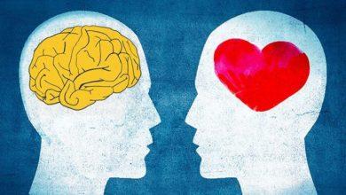 Photo of Çalışma Hayatında Duygusal Zeka Ne Kadar Önemlidir?