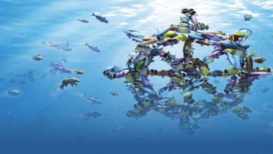 Photo of Deniz Yatırım Müfettiş Alımı Gerçekleştirecek!