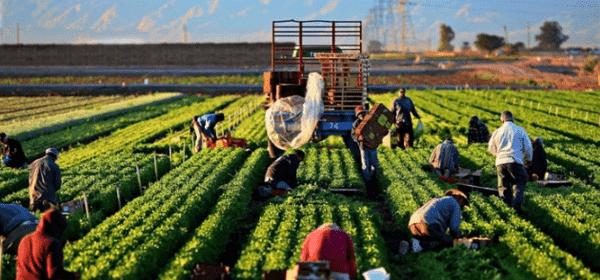 Denizbank Çiftçilere Özel Kampanyalarını Tanıttı