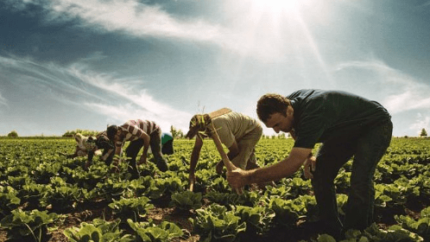 Dünya Çiftçiler Günü'ne Özel Finansbank'tan Fırsat!