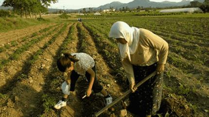 Ziraat Bankası ve Migros'tan Çiftçilere Özel Destek!