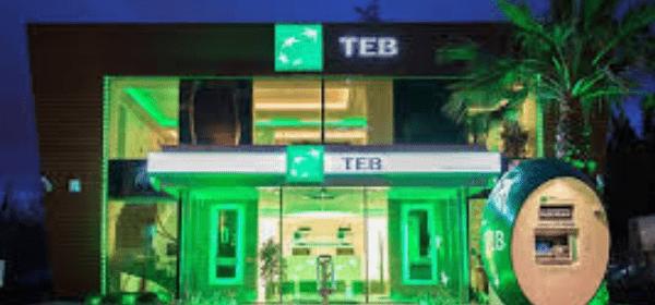Türkiye'de Yılın En İyi Nakit Yönetimi Bankası TEB Oldu