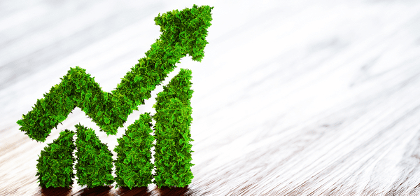 JP Morgan Yeşil Tahvil Dünyasına Giriş Yaptı